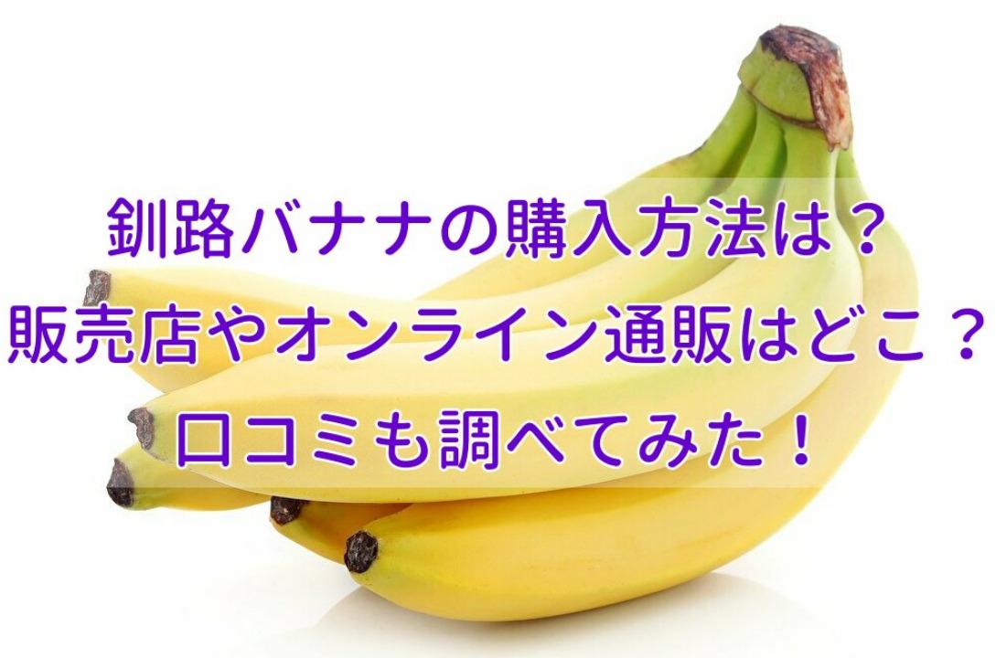 釧路バナナの購入方法は?販売店やオンライン通販はどこ?口コミも調べてみた!
