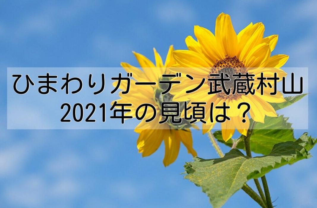 ひまわりガーデン武蔵村山2021年の見頃はいつ?駐車場や混雑状況まとめ!